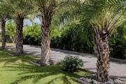 Grande villa à vendre à Mont Mascal dans un bel environnement calme.