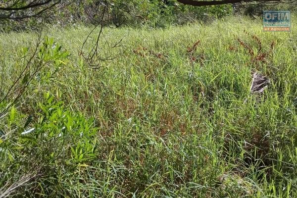 A vendre beau terrain de 575 toises en première position sur la route 20 pieds à Pereybère.