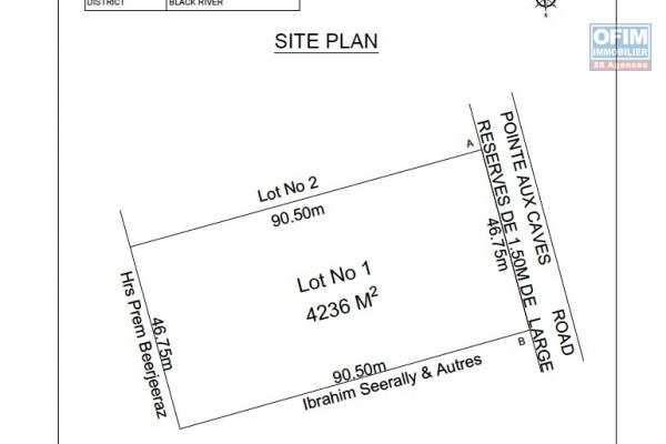 Albion à vendre terrain de 4236M2 ou 1115 toises ou 100perches situé à Pointe aux caves Albion.